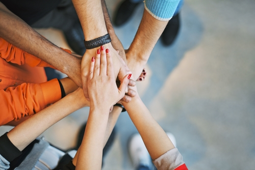 How can you turn a diverse team into a high performing team?