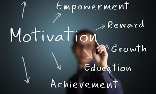 How do you motivate the members of your team?