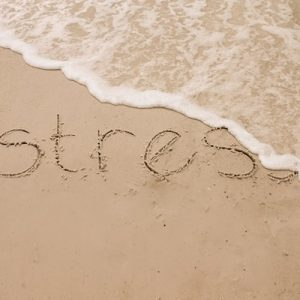 Wash the stress away with these mindfulness practices.