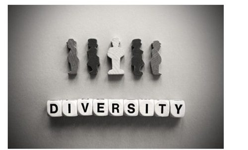 What is a diverse workplace?